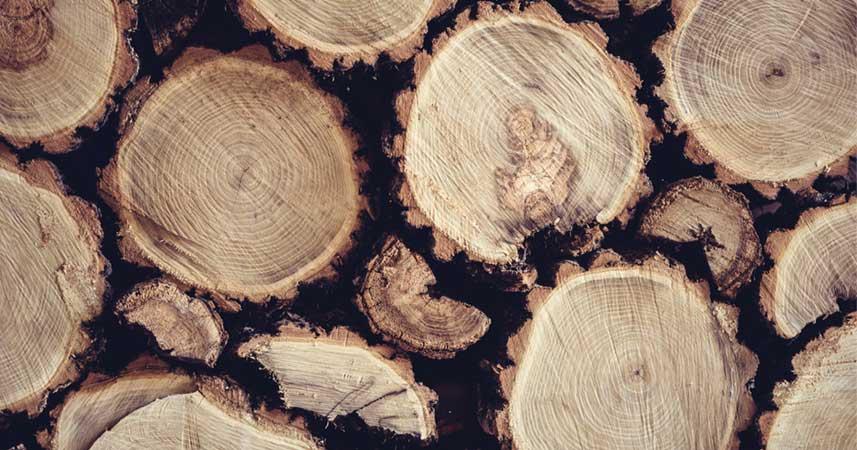 Matériau bois français ACM Menuiseries
